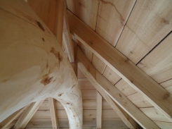 Curved roof beam adds height to a hipped roof for a garden Tea House